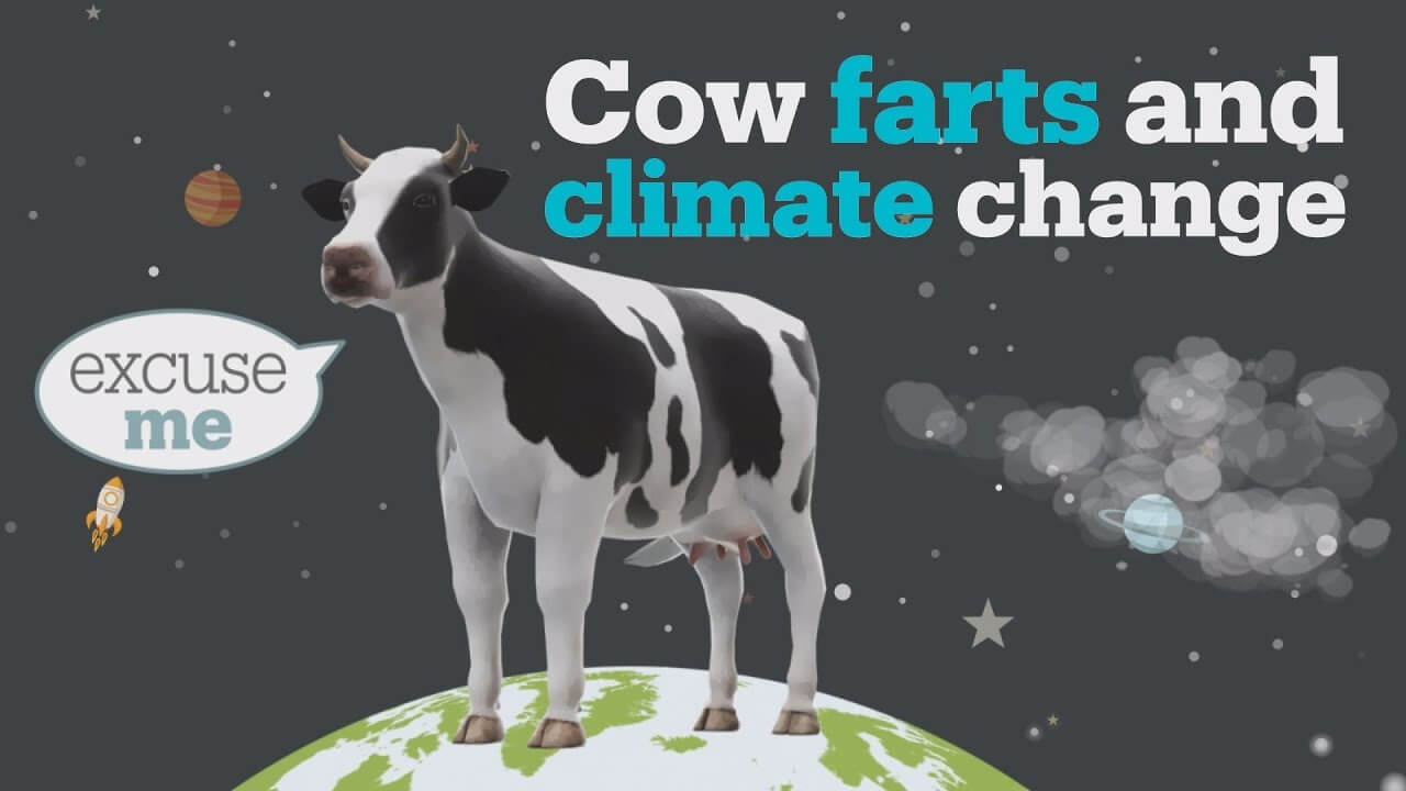 Cows are responsible for climate change