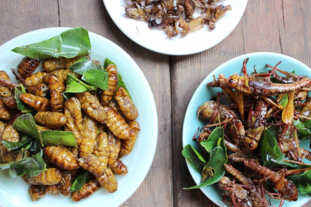 Can beef be replaced by Crickets?